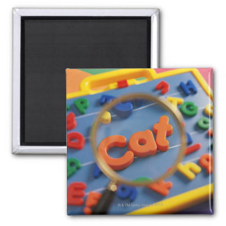 Magnifying glass enlarging view of word CAT Magnet