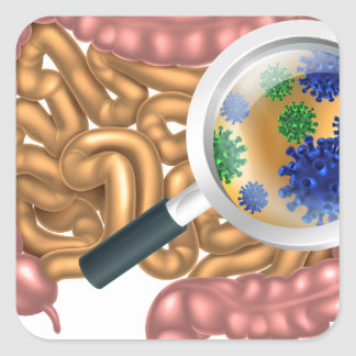 Magnifying Glass Gut Flora Square Sticker