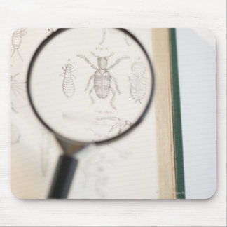 Magnifying glass over book showing insects mouse pad