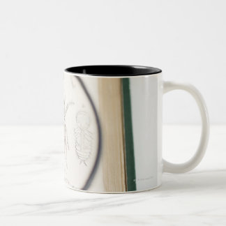 Magnifying glass over book showing insects Two-Tone coffee mug
