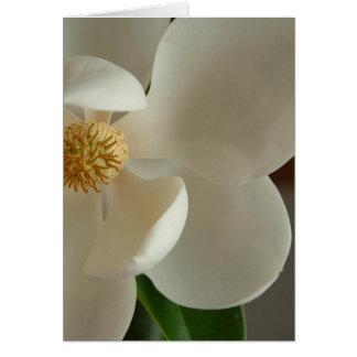 magnolia 2 card