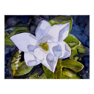 magnolia 2 posters