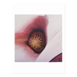 Magnolia (3) - Tarjeta del arte Postales