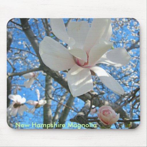 Magnolia-4-04-10, New Hampshire Magnolia Mousepad