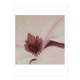 Magnolia 4 - Tarjeta del arte Postales