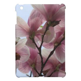 magnolia-6.jpg