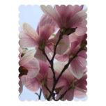 """magnolia-6.jpg invitación 5"""" x 7"""""""