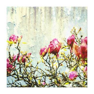 Magnolia aherrumbrada lona envuelta para galerias