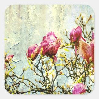 Magnolia aherrumbrada pegatina cuadrada