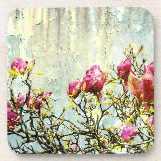Magnolia aherrumbrada posavasos de bebida