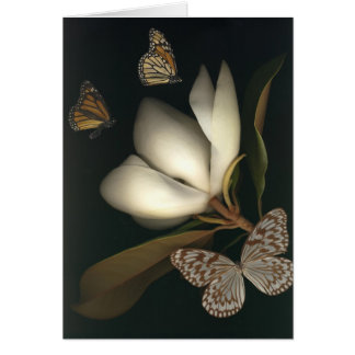 magnolia and butterflies1 note card