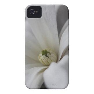 Magnolia blanca Case-Mate iPhone 4 fundas
