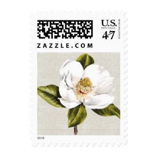 Magnolia blanca elegante estampillas