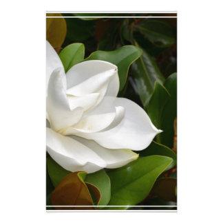 Magnolia blanca papelería personalizada
