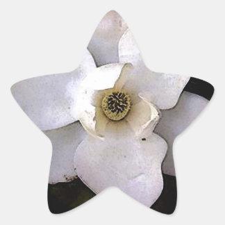Magnolia blanca pegatina en forma de estrella