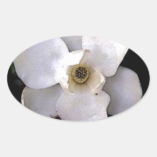 Magnolia blanca pegatina ovalada