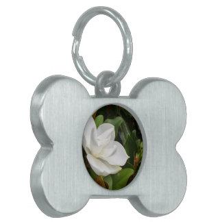 Magnolia blanca placas mascota