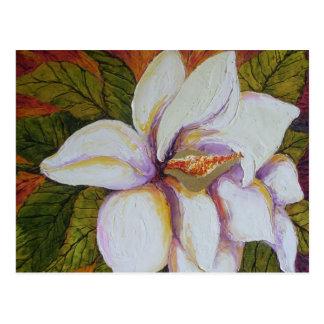 Magnolia blanca postales