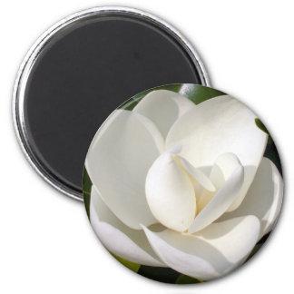 Magnolia Bloom Magnet