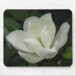 "Magnolia Bloom Mouse Pad<br><div class=""desc"">Magnolia Bloom</div>"