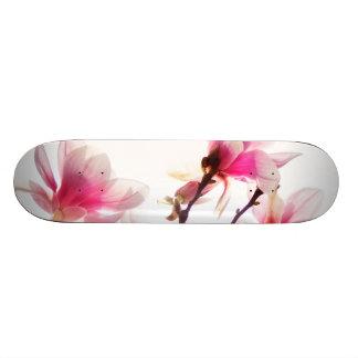 magnolia blooming scateboard skateboard
