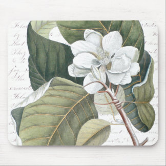 Magnolia Blossom and Clara Balfour Text Collage Mouse Pad