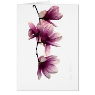 Magnolia blossom custom note cards