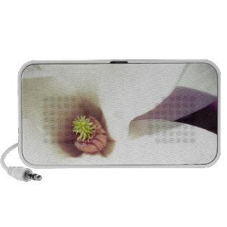 Magnolia Blossom Mp3 Speakers