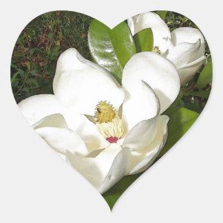 Magnolia Blossom Heart Sticker