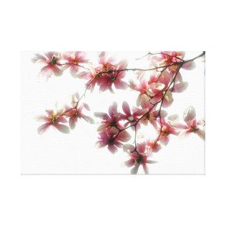 Magnolia Blossoms Custom Art Canvas