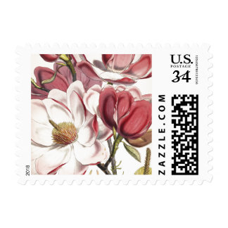 Magnolia - Botanicals Collection Postage