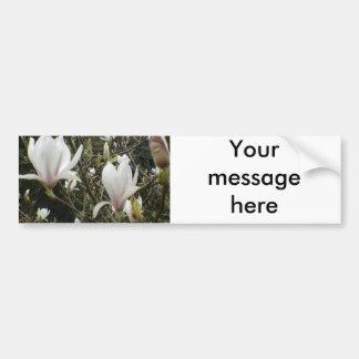 Magnolia Bumper Sticker
