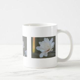 Magnolia Centennials Coffee Mug