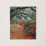 Magnolia Charleston de los robles de las azaleas d Puzzle Con Fotos