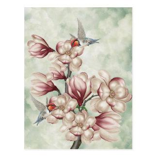 Magnolia Colibries Postcard
