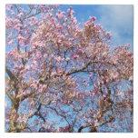 Magnolia contra el cielo azulejo cerámica