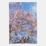 Magnolia contra el cielo toalla de mano