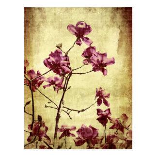 Magnolia de Beautifu en fondo del grunge Postal