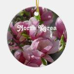 Magnolia de Corea del Norte Ornatos