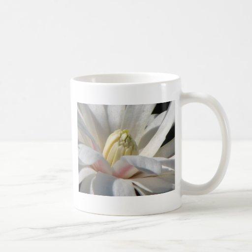 Magnolia de estrella taza básica blanca