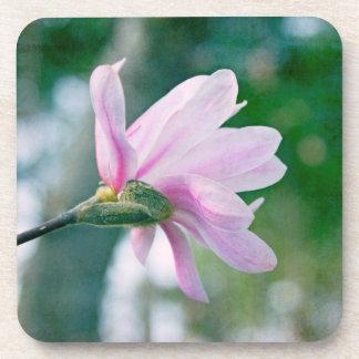 Magnolia de la bailarina posavasos de bebidas