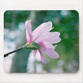 Magnolia de la bailarina alfombrilla de ratón