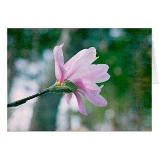 Magnolia de la bailarina felicitación
