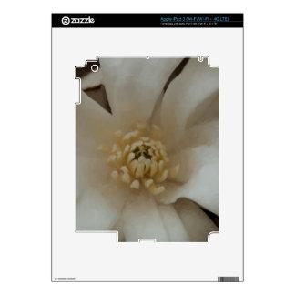 Magnolia de la bola de nieve iPad 3 pegatina skin