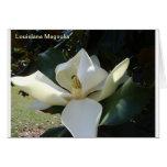Magnolia de Luisiana Felicitaciones