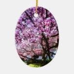 Magnolia de Magnificant Ornamentos De Reyes Magos