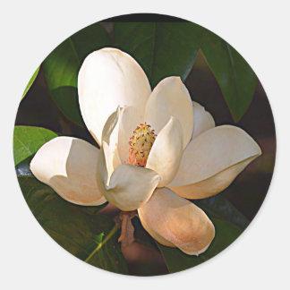 Magnolia de Mississippi Pegatina Redonda