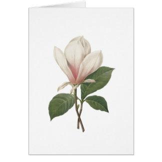 Magnolia de Redoute Tarjeta De Felicitación