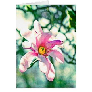 Magnolia de Tiffany