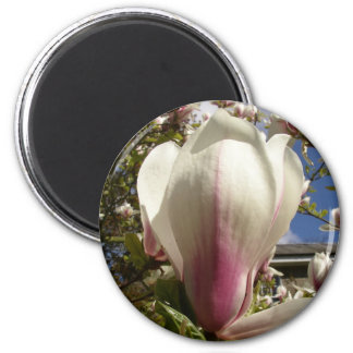 Magnolia del primer imán redondo 5 cm